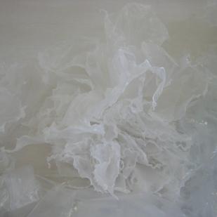 Plastic Reef (2009) - detail